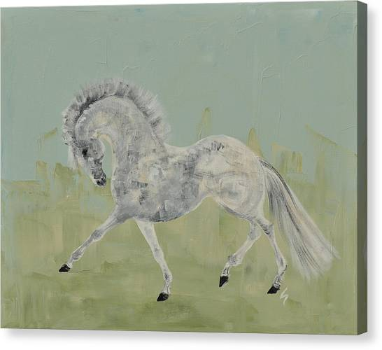 Le Gris Cheval Canvas Print by Liz Pizzo