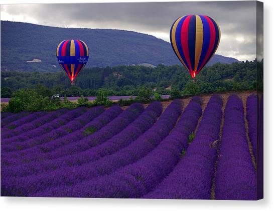 Hot Air Balloons Canvas Print - Le Matin by John Galbo