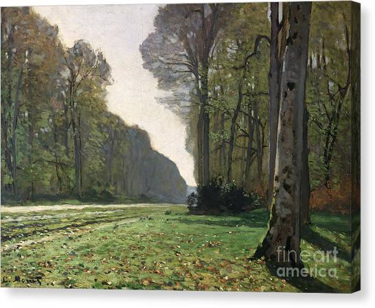 Tree Canvas Print - Le Pave De Chailly by Claude Monet