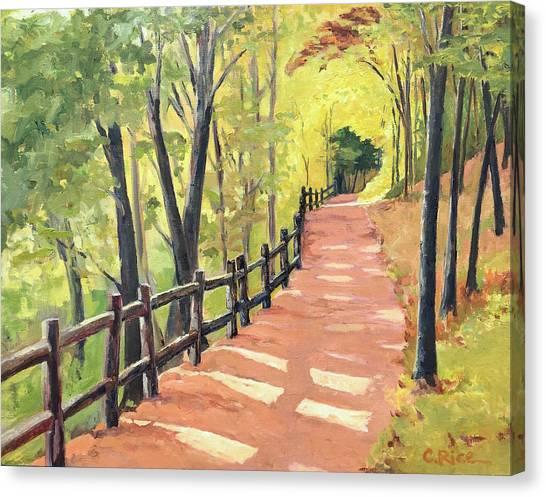 Lead Me Canvas Print