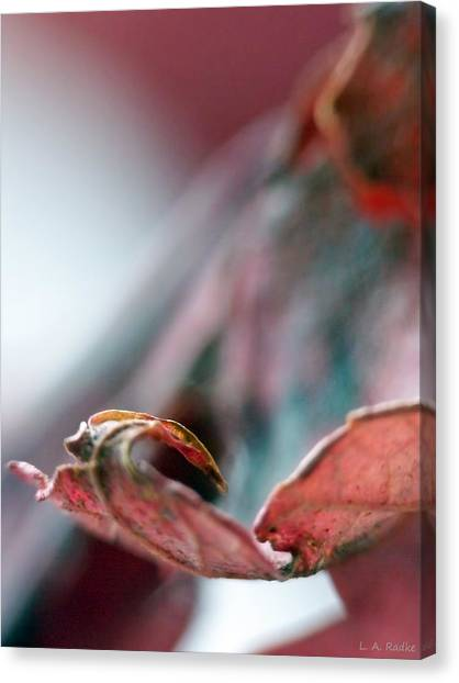 Leaf Abstract I Canvas Print