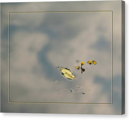 Leaf And  Reflection Canvas Print