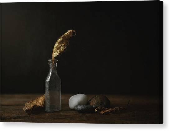 Nature Still Life Canvas Print - Leaf Bottle Rocks by Scott Norris