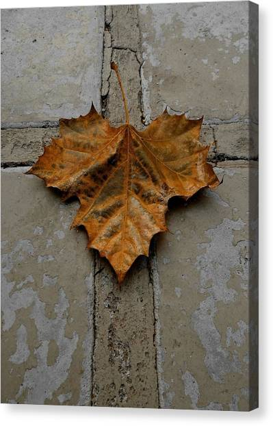 Leaf Cross Canvas Print