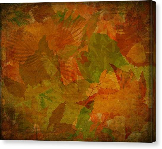 Leaf Texture And Background Canvas Print