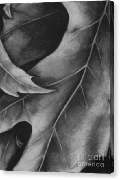 Leaf The Final Stage Canvas Print by Jamey Balester