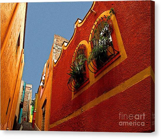 Leafy Windows Canvas Print by Mexicolors Art Photography