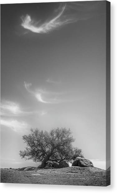 Leaning In Canvas Print by Joseph Smith