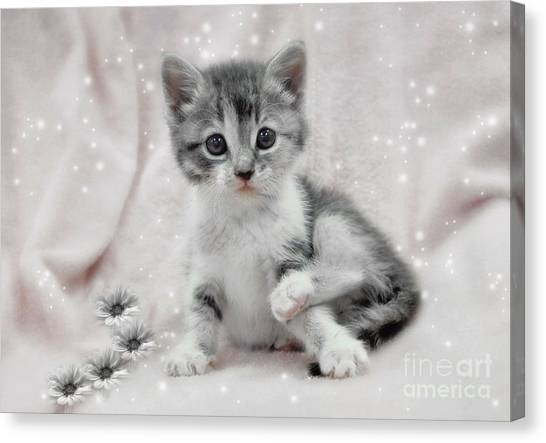 Learning To Sit Like A Lady Canvas Print