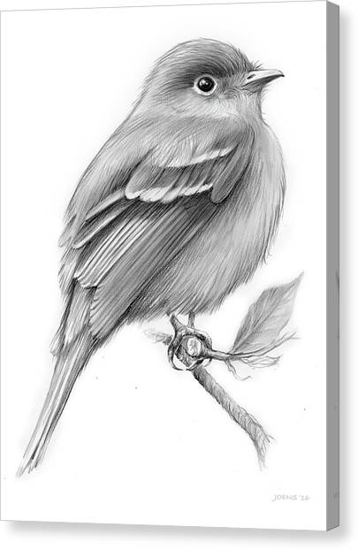 Flycatchers Canvas Print - Least Flycatcher by Greg Joens