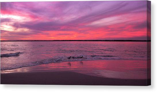 Sandpipers Canvas Print - Leave Us To Dream 2 by Betsy Knapp