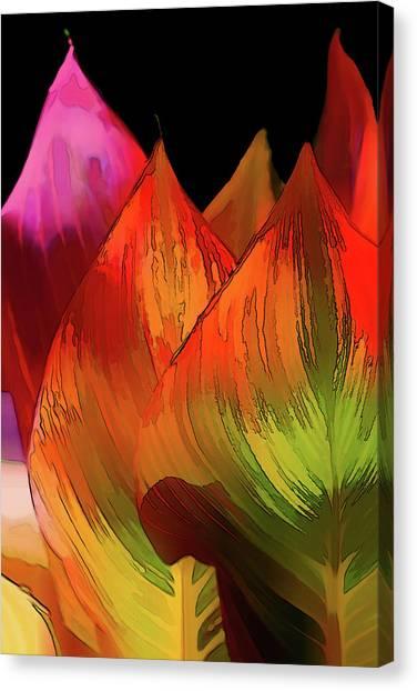Terry Davis Canvas Prints