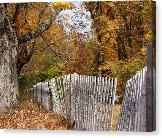 Leaves Along The Fence Canvas Print