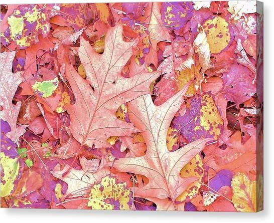 Canvas Print - Leaves Are Falling by Slawek Aniol