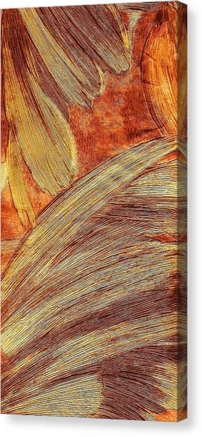 Canvas Print - Leaves Of Brushstrokes by Anne-elizabeth Whiteway