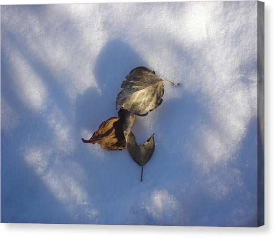 Leaves On Snow Canvas Print