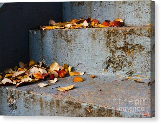 Leaves On The Stairs Canvas Print