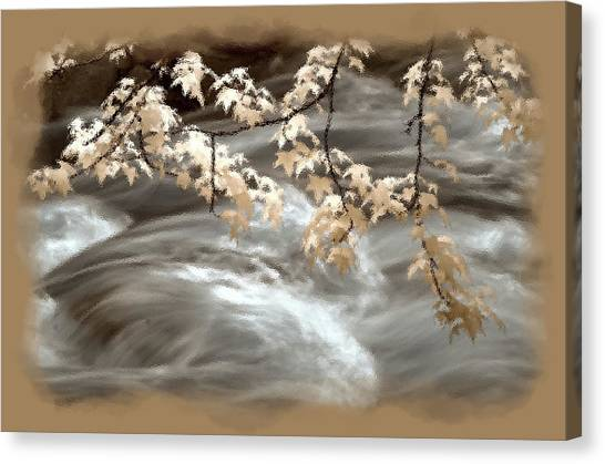 Leaves Over Gossamer Waters Canvas Print