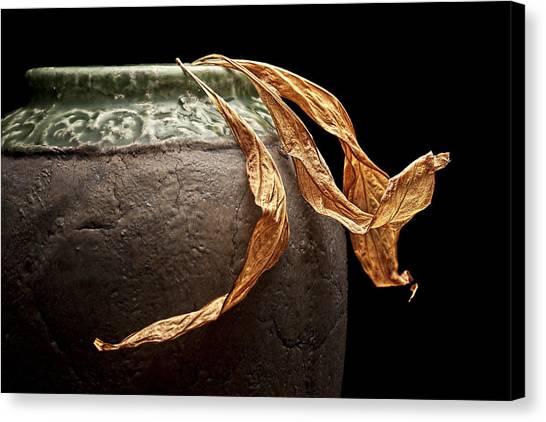 Dead Canvas Print - Leaves by Tom Mc Nemar