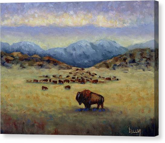 Buffaloes Canvas Print - Legend by Linda Hiller
