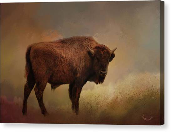 Legend Of Buffalo Spirit Canvas Print
