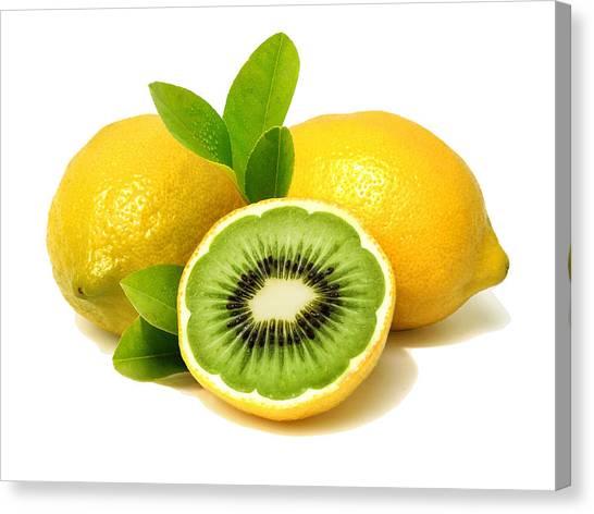 Lemon Kiwi Canvas Print
