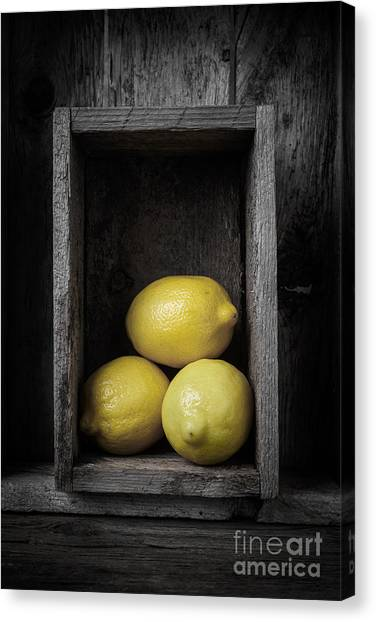 Lemons Canvas Print - Lemons Still Life by Edward Fielding