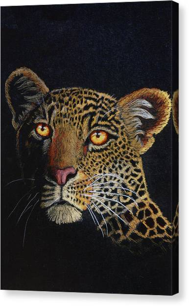 Leopard In The Dark Canvas Print by Lorraine Foster