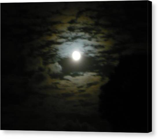 Leopard Moon Canvas Print by Adrianne Wood