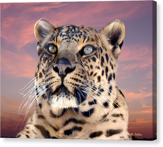 Leopard Portrait Number 3 Canvas Print