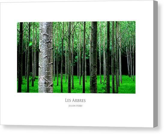 Les Arbres Canvas Print