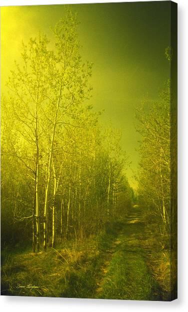 Buy Art Online Canvas Print - Less Taken by Bruce Thompson