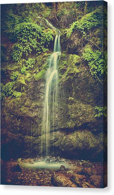 Scenic Canvas Print - Let Me Live Again by Laurie Search