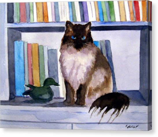 Siamese Canvas Print - Lhasa by Marsha Elliott