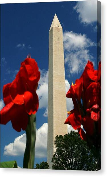 Washington Monument Canvas Print - Liberty by Mitch Cat