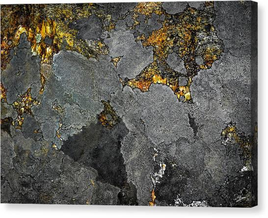 Lichen On Granite Rock Abstract Canvas Print