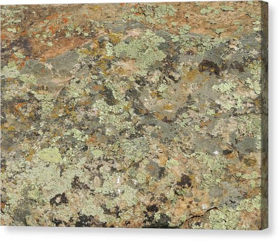 Lichens On Boulder Canvas Print