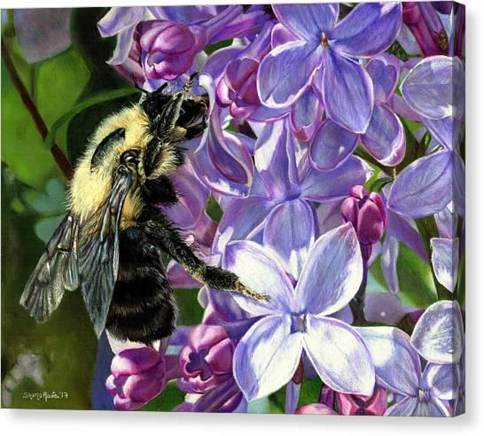 Life Among The Lilacs Canvas Print