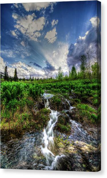 Life Giving Stream Canvas Print