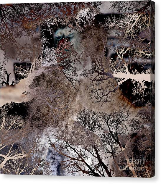 Life In A Bush Of Ghosts Canvas Print