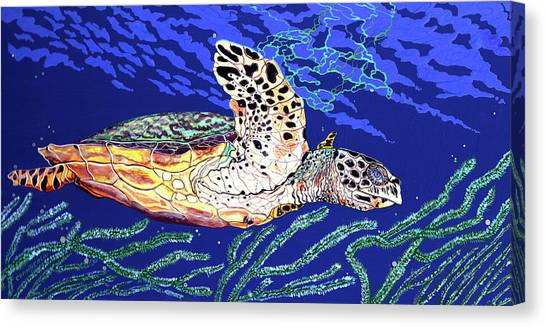 Life In The Slow Lane Canvas Print