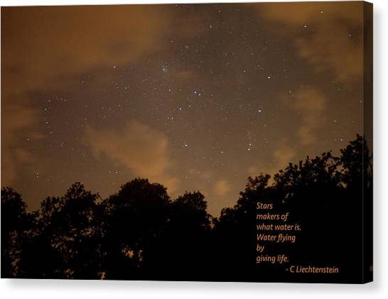 Life, Water And Stars Canvas Print