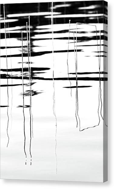 Light And Shadow Reeds Abstract Canvas Print