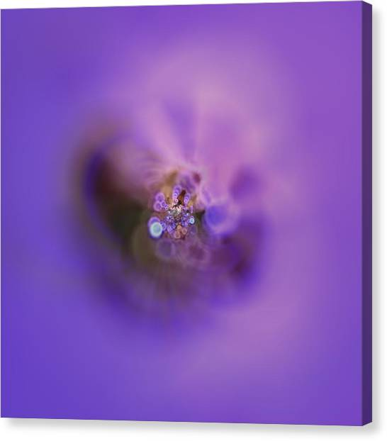 Canvas Print featuring the digital art Light And Sound Abstract by Robert Thalmeier