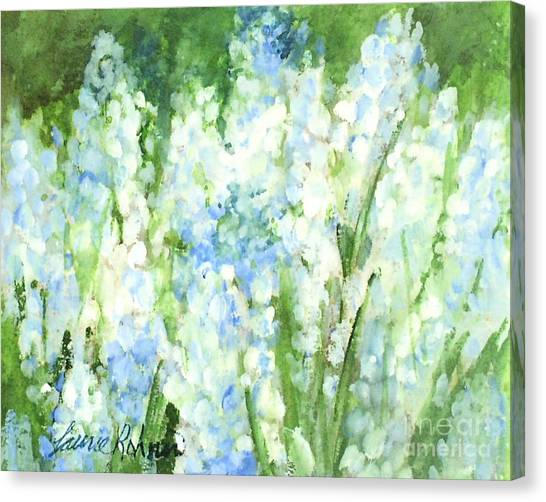 Light Blue Grape Hyacinth. Canvas Print