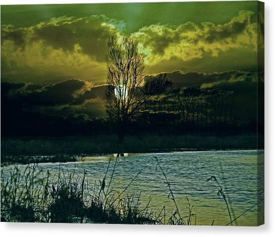 Everglades Canvas Print - Light-captor by Joachim G Pinkawa