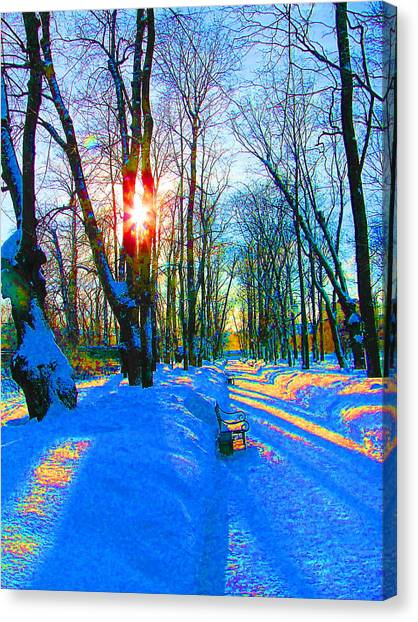 Light In Garden Canvas Print