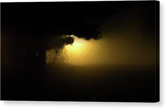 Light Through The Tree Canvas Print