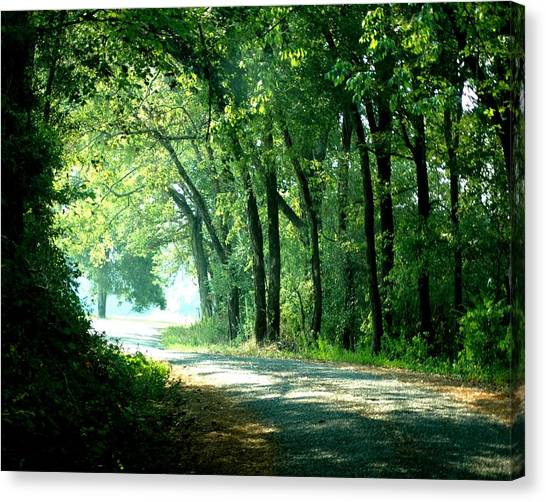 Lighted Path Canvas Print by Lynn Reid
