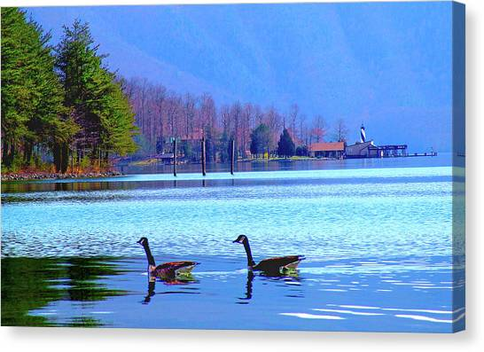Lighthouse Geese, Smith Mountain Lake Canvas Print